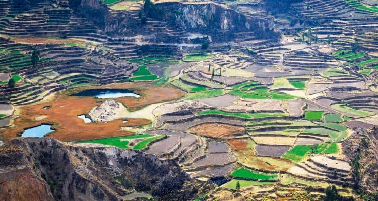 Top 10 Lugares Perú - Cañón del Colca